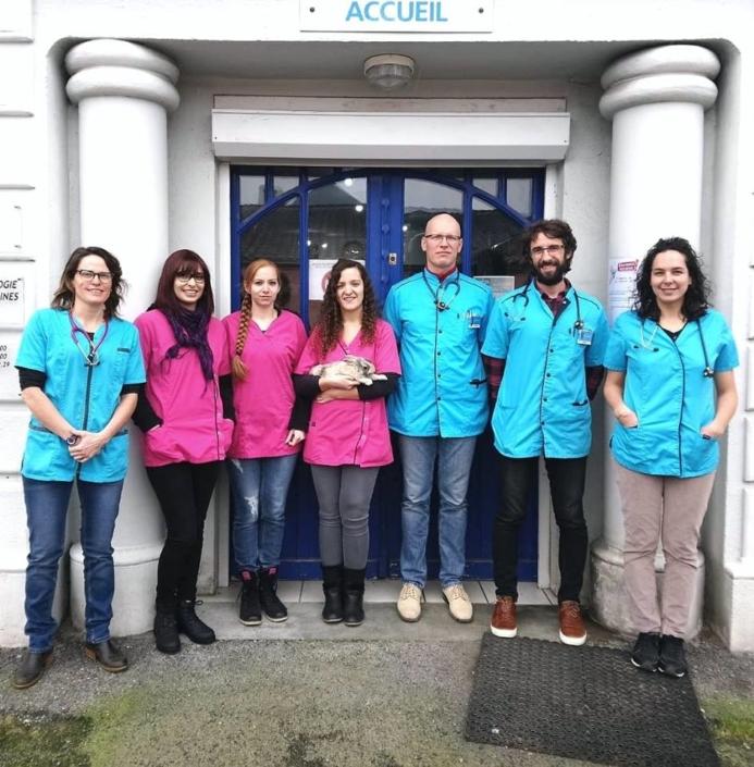 photo equipe Clinique vétérinaire de l'aérodrome à Laloubère
